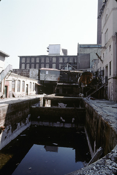 Pool of Stagnant Water at the Abandoned Fulton Bag and Cotton Mill