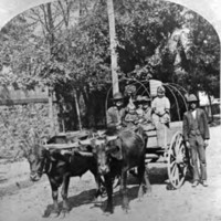 View of unidentified men, women, and children in an oxcart on an excursion visiting the Cotton States and Internationals Exposition.jpg